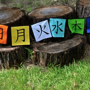Days of the Week Kanji Flag Bunting